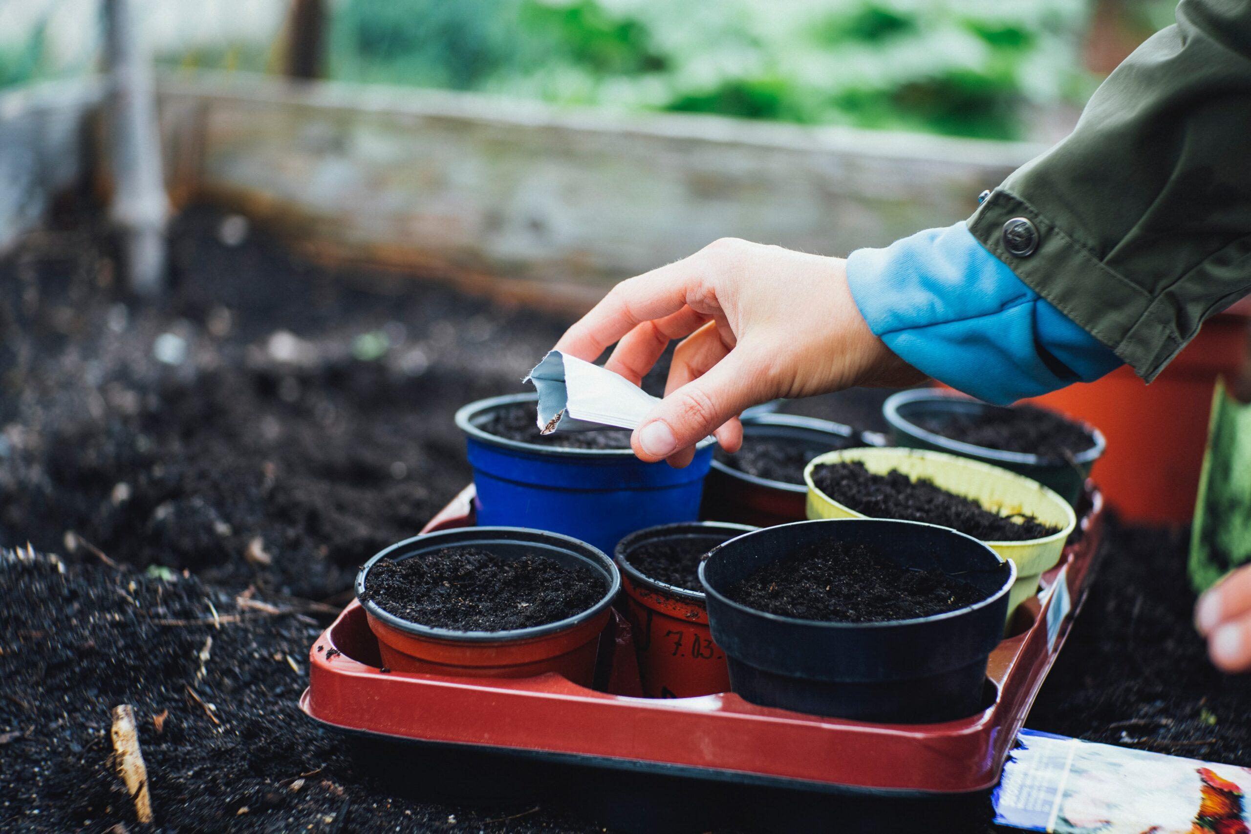 Hochbeet-Blogartikel-smarttoplan-Frühling